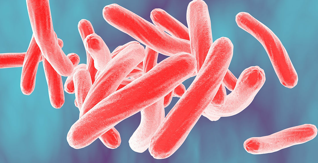 3D illustration of bacterium Mycobacterium tuberculosis