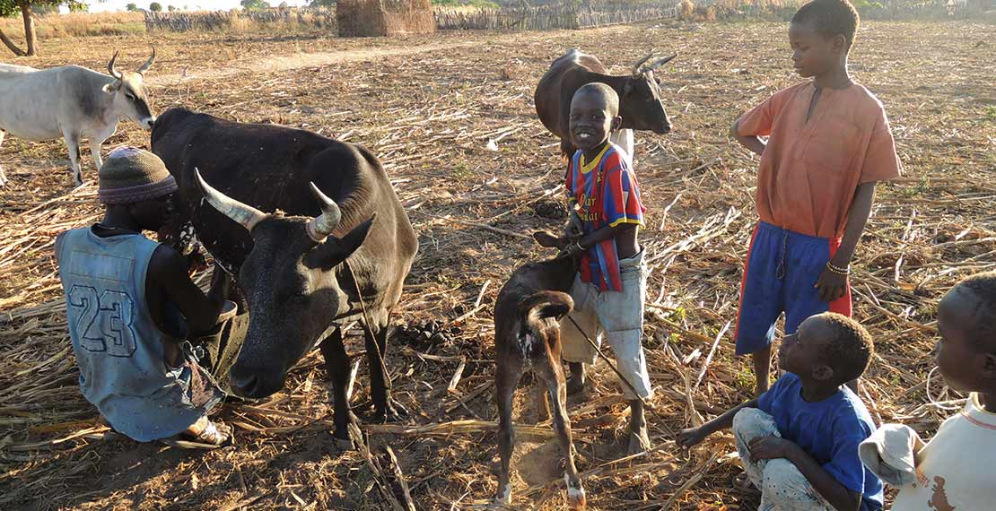 Children in rural Gambia