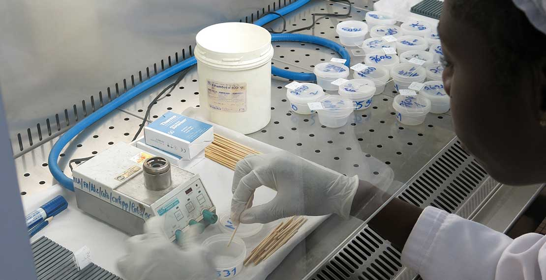 picture of a laboratory technician examining a sample